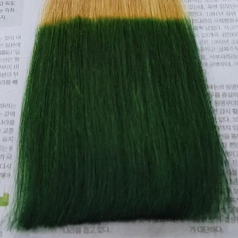 염색<br/>초록색